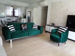 Set verde model Otto